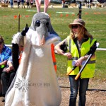 Buster Bilby at YF Show 2013