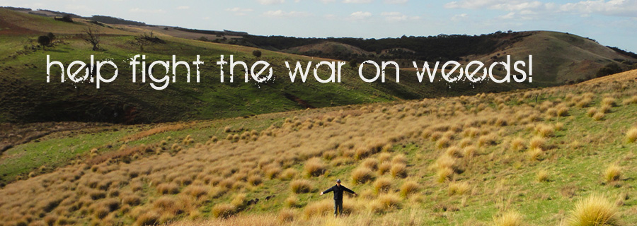 Help fight the war on weeds